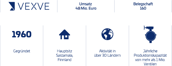 Vexve company infograph